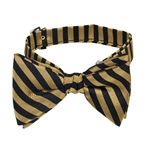 University of Missouri Diagonal Stripes Old Gold and Black Bowtie