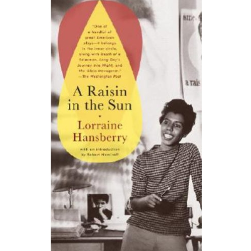 an analysis of the themes presented in a raisin in the sun by lorraine hansberry Love and sacrifice: analysis of lorraine hansberry's a raisin in a raisin in the sun, reflects the theme that one must sacrifice something for the love and.